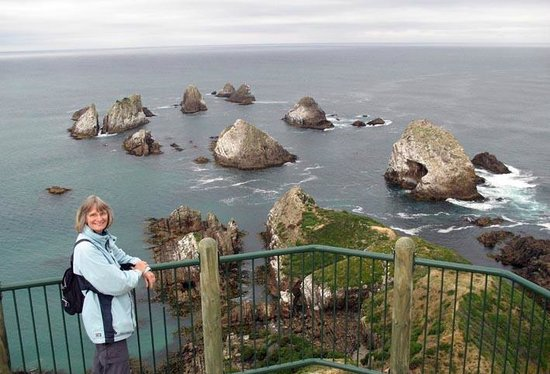 Nugget Point/Tokata Walks: Below are lots of seals