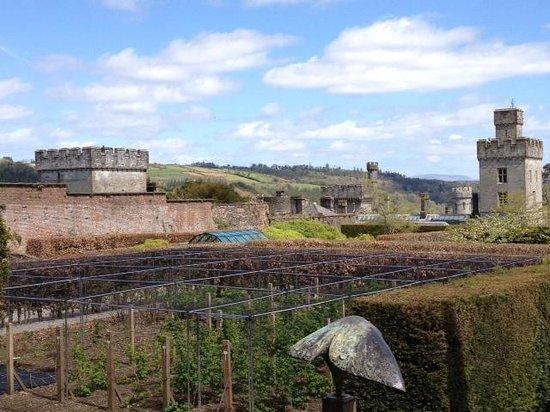 Lismore Castle Gardens & Gallery: upper gardens