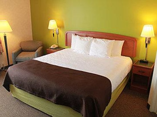 AmericInn Hotel & Suites Rochester Airport: King Room