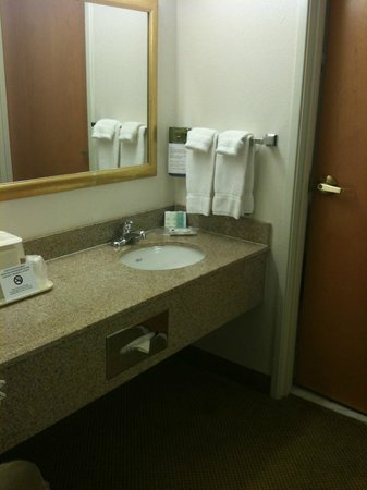 Comfort Suites Arena: spacious sink area & door to separate toilet & shower