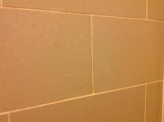 The Westin Mount Laurel: Orange mildew is forming on day 3 of our stay.