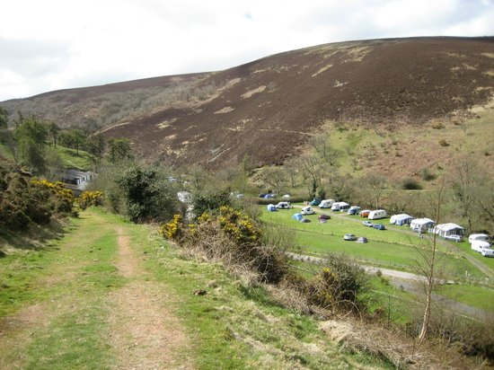 Cloud Farm Camping: One of the many fields available at the site