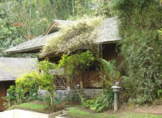 Highland Resort & Nature Tours: Superior Bungalow