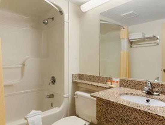 Days Inn Geneva Finger Lakes: Bathroom