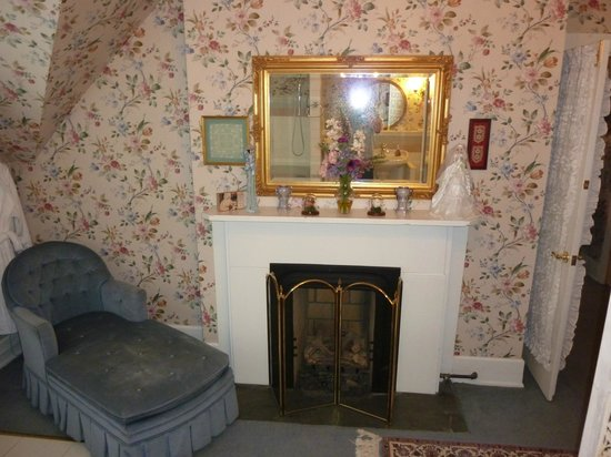 Central Park Bed and Breakfast: Fireplace in Bathroom