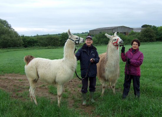 Catanger Llamas: Us with our llamas