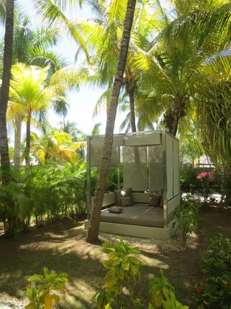 Paradisus Punta Cana Resort: RS Private Garden