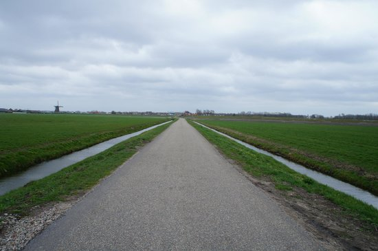 ‪‪De Zonnehoed‬: The long road that leads to the town centre‬