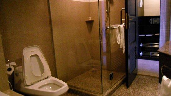 Majestic Grande Hotel: Shower