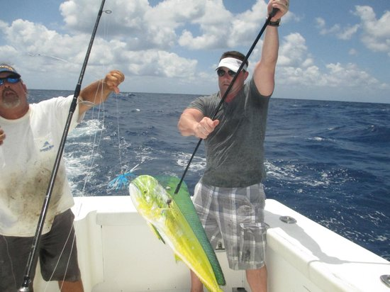 Sea clusion charter sport fishing key west fl updated for Key west florida fishing