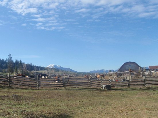 Big Bar Guest Ranch: Authentic barns and corrals.