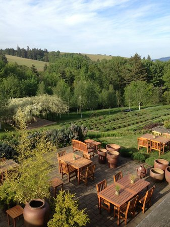 Red Ridge Farms: View of Garden, and outdoor patio next to gift shop, from our private deck overlooking it all!