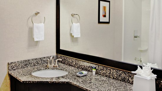 Four Points by Sheraton Kalamazoo: Guestroom Bathroom