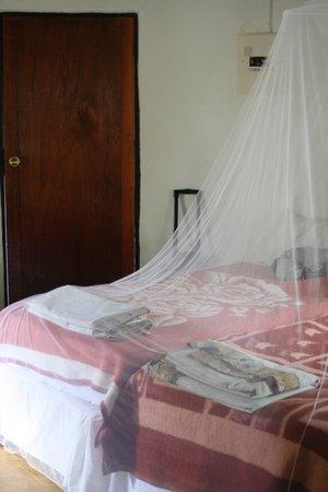 Cheetah Inn : Comfortable beds