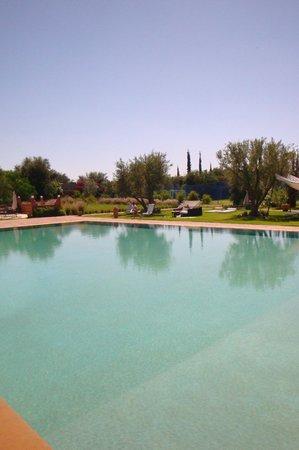 Les Jardins de Zyriab Resort & Spa: Au bord de la piscine