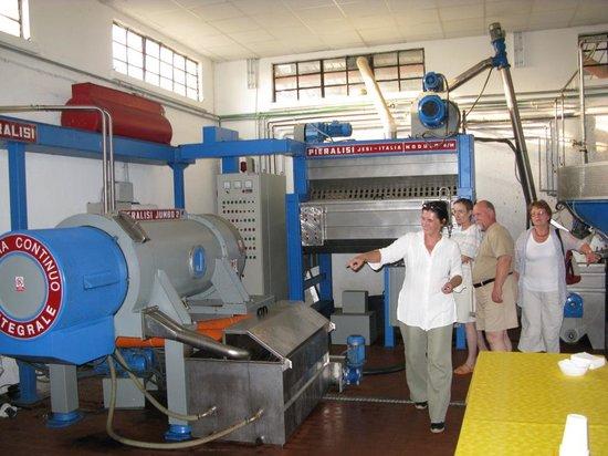 I Moricci: olive oil pressing
