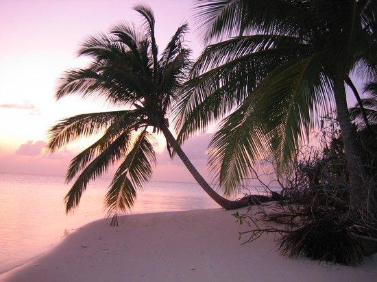 Filitheyo Island Resort: Hamza island