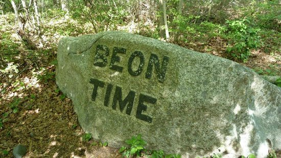 "Dogtown Common: ""Be on time"" boulder"