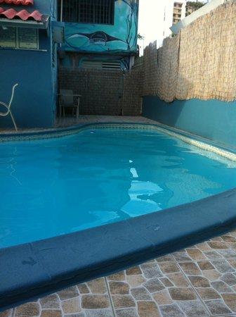 Coqui Inn: pool