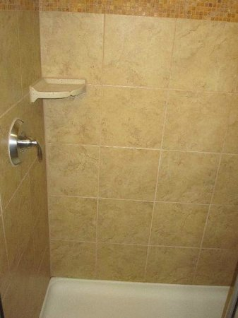 Hampton Inn & Suites Fort Worth Fossil Creek: shower