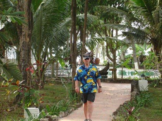 تروبيكانا ريزورت: Path from bungalow to the pool