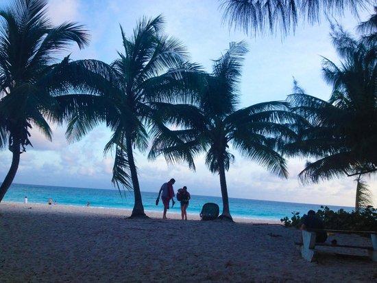 Maxwell Beach: Plenty of natural shade