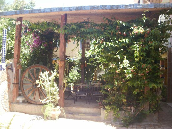 Apartments Fiesta: Small Cabana