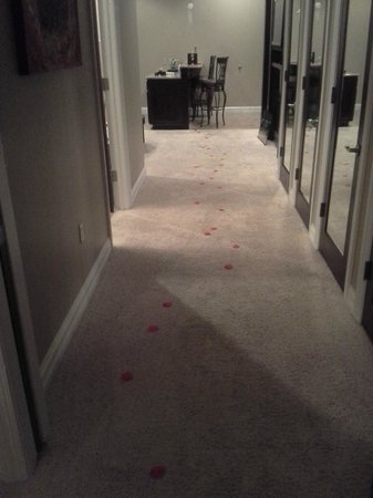 Camden on the Lake Resort, Spa, & Yacht Club: Rose petals going from the door to the bedroom