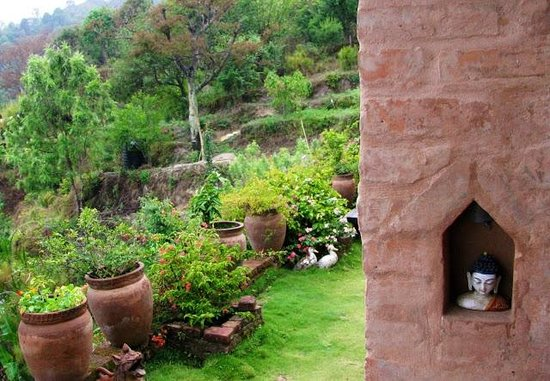 Shivapuri Heights Cottages: Garden