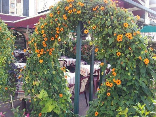 Le Saint-Jean: La terrasse fleurie