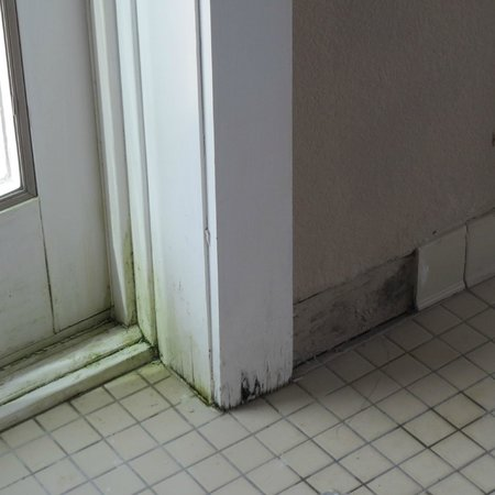 Sleep Inn & Suites: Rotting wood, mildew, missing tile