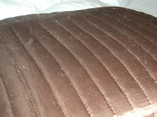 Camelot Castle Hotel: lack of detail; flat old cushion; bobbled all over, just looked terrible.
