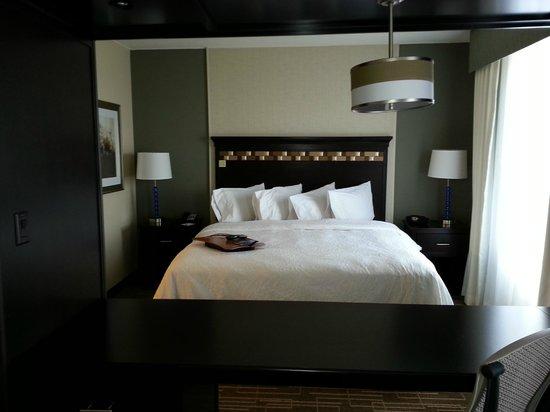 Hampton Inn & Suites Denver/Airport-Gateway Park: King bed
