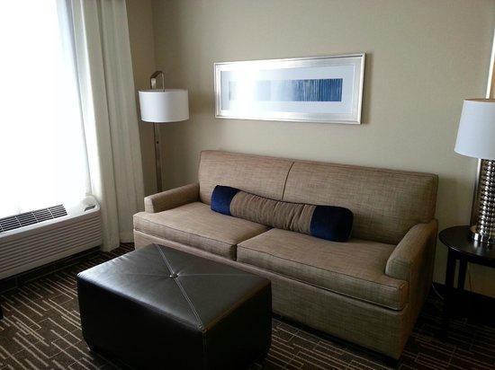 Hampton Inn & Suites Denver/Airport-Gateway Park: Living space