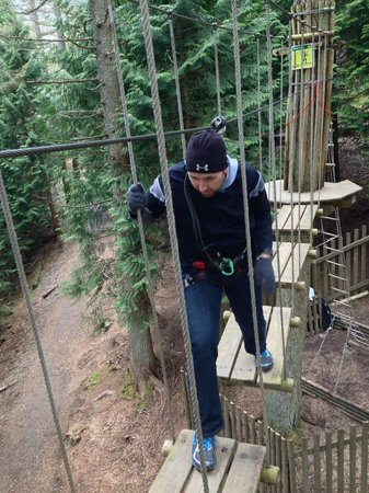 Go Ape Whinlatter: Fairly easy (but high!) bridge