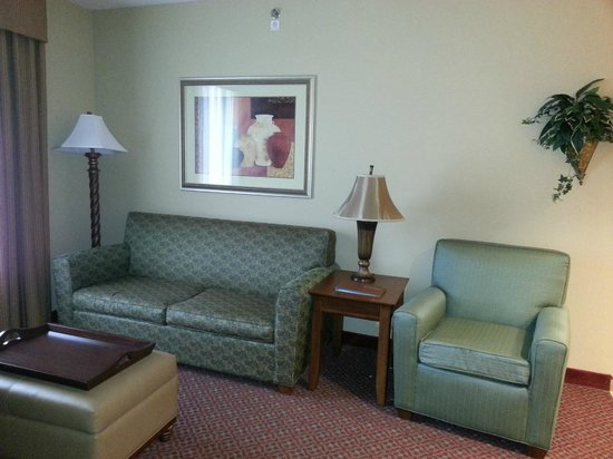 Homewood Suites Decatur-Forsyth: Living area