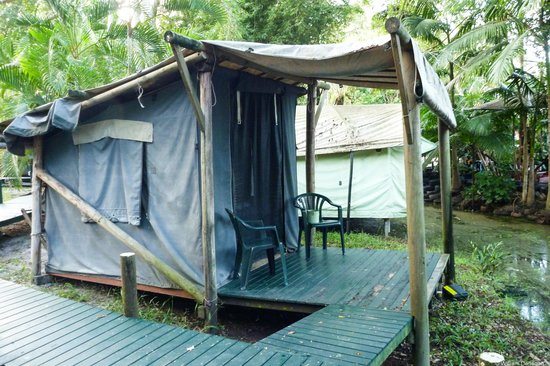 The Arts Factory Backpackers Lodge: Canvas tent accomodation