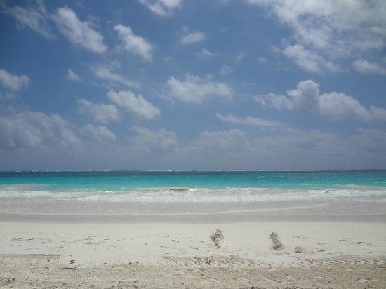 Posada Lamar: incredible beach