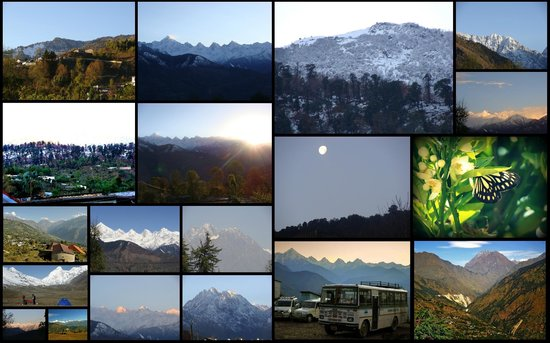 Munsyari, India: Collage of the scenery