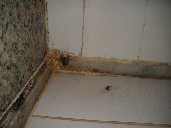 """Center Hotel: Esses cabelos estavam no """"box"""" do banheiro ..."""