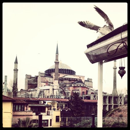 Alaturka Hotel: View of Hagia Sophia from Hotel's top floor Terrace