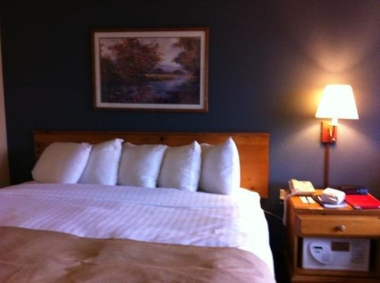 AmericInn Lodge & Suites Eagle: chambre
