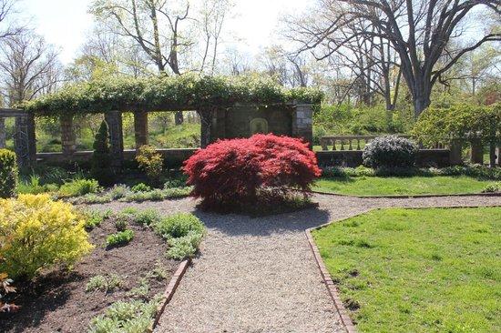 Fort Stamford Park - Goodbody Garden: The weird red plant