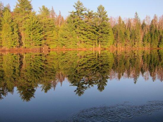 Algonquin Adventure Tours - Day Tours: Joe Lake