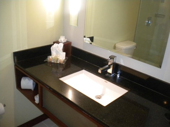Holiday Inn San Jose-Escazu: El baño