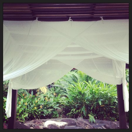 Misty Mountains Tropical Rainforest Retreat: RElax by the pool.