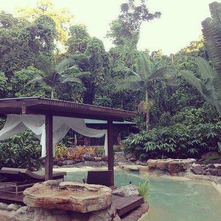 Misty Mountains Tropical Rainforest Retreat: Amazing place for couples & families.