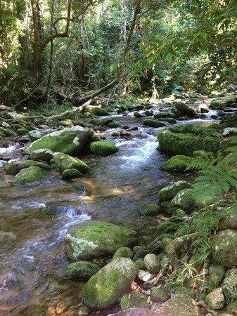 Bellenden Ker, Australia: Waterfall.