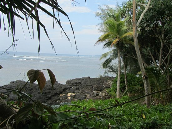 Sealodge at Princeville: Walking to the beach