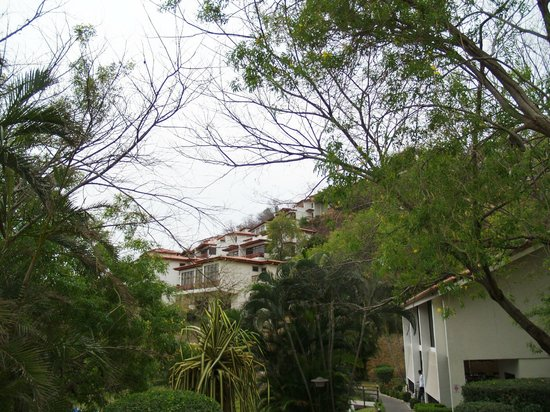 Villas Sol Hotel & Beach Resort: Nice grounds